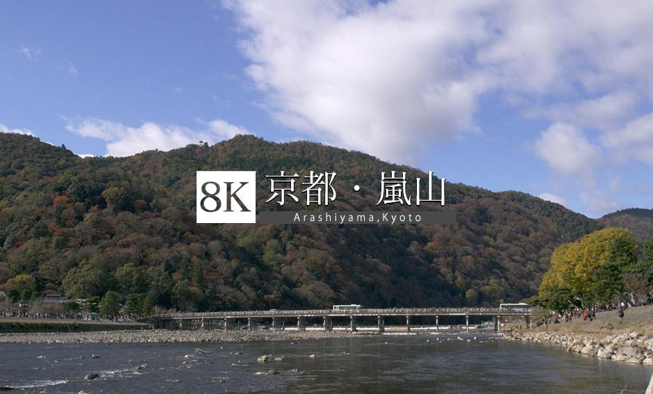 京都 嵐山_8K