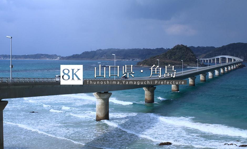 山口県 角島_8K