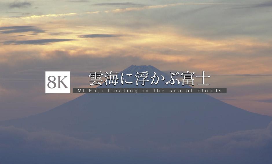雲海に浮かぶ富士とトワイライト_8K