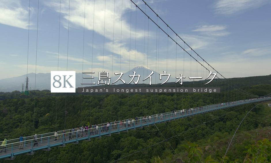 絶景、日本一長い吊橋_8K