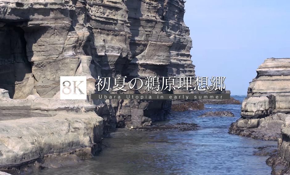 初夏の鵜原理想郷_8K