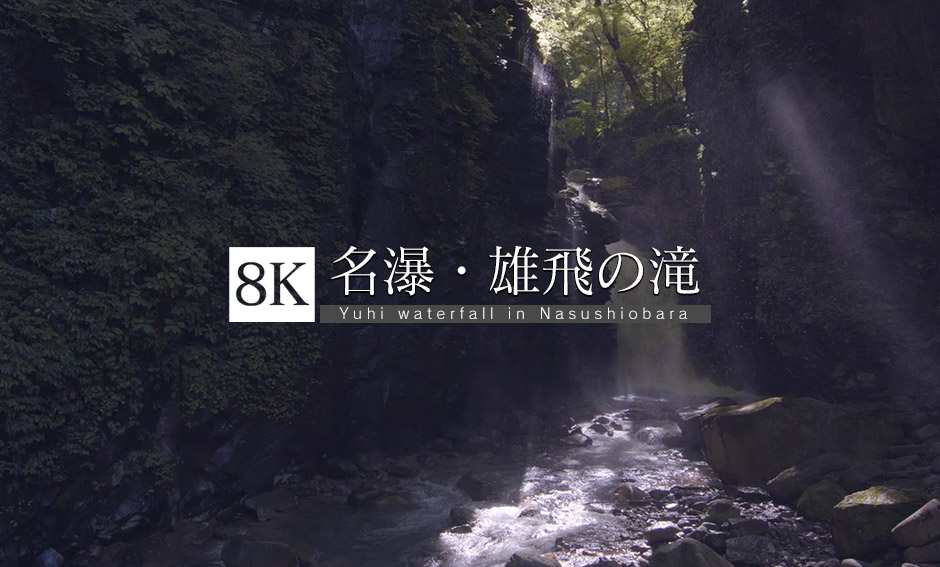 スッカン沢の名瀑、雄飛の滝_8K