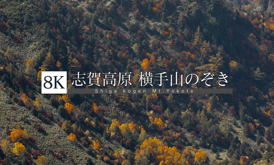 """秋到来!横手山""""のぞき""""周辺_8K"""