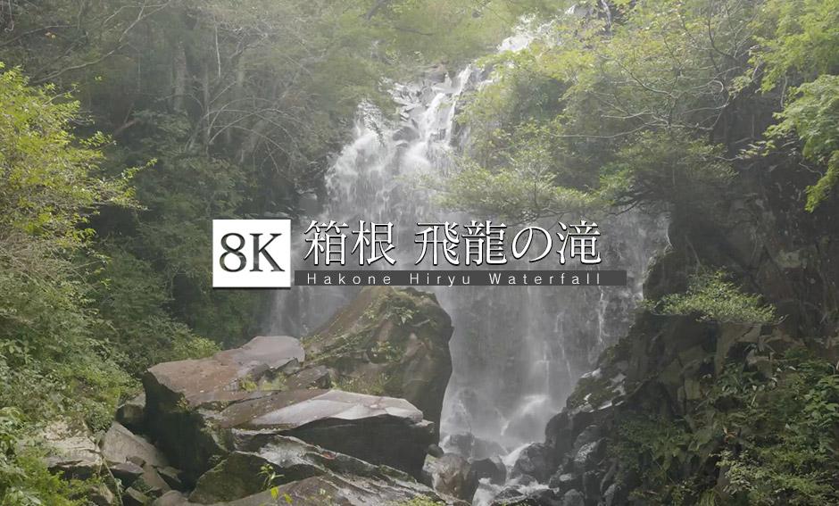生き続ける_飛龍の滝 _8K