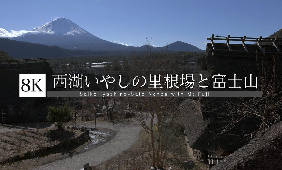 富士と茅葺き屋根のある景色_8K