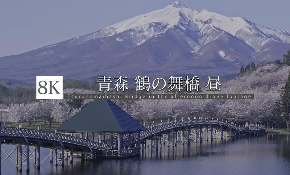 DRONE_青森・鶴の舞橋の昼_8K