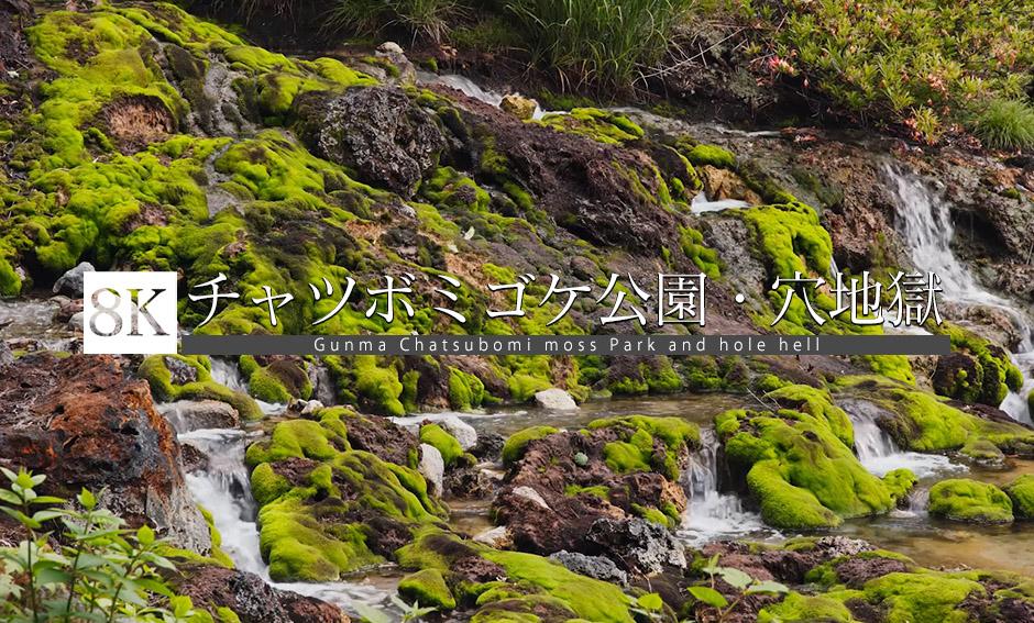 群馬 チャツボミゴケ公園・穴地獄_8K