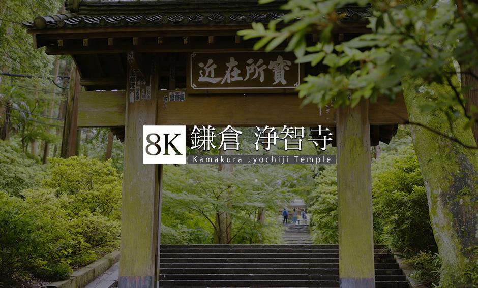 鎌倉・雨の浄智寺と竹林の小径_8K