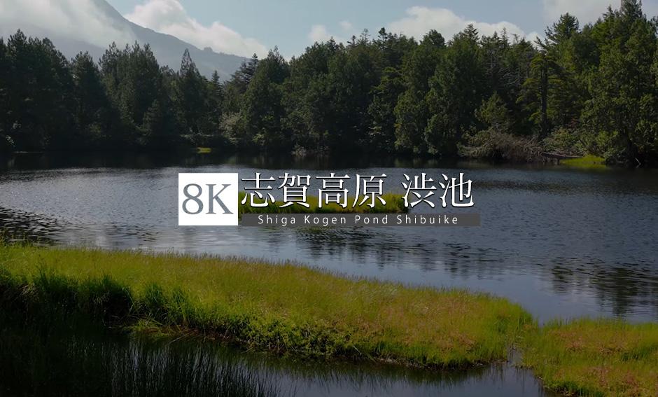 長野・志賀高原〜渋池_8K