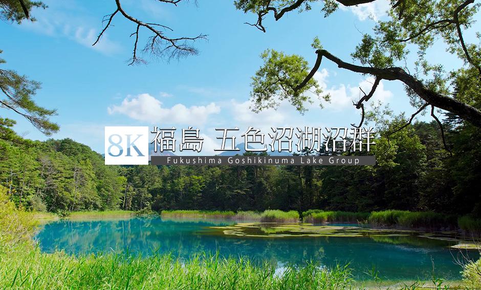 福島・五色沼湖沼群の夏_8K