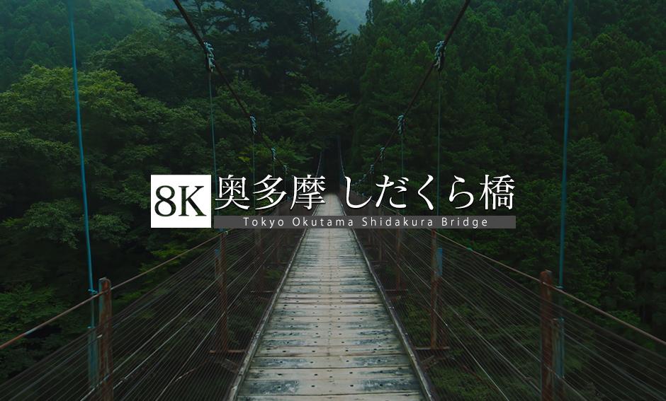 奥多摩 しだくら橋_8K