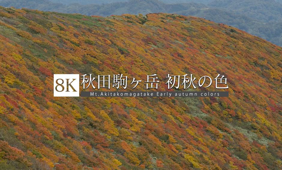 秋田駒ケ岳 Vol.2 初秋の色模様