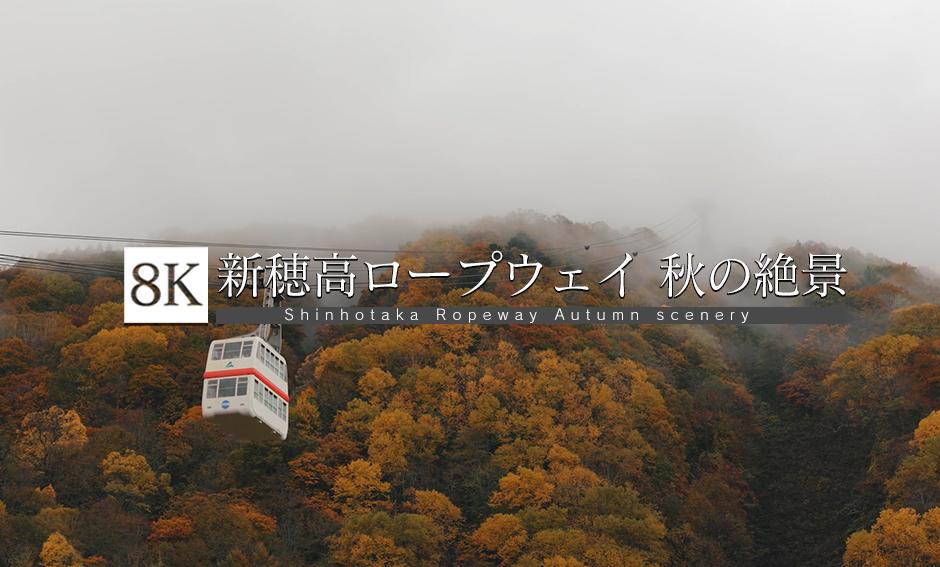 新穂高ロープウェイ 秋の絶景