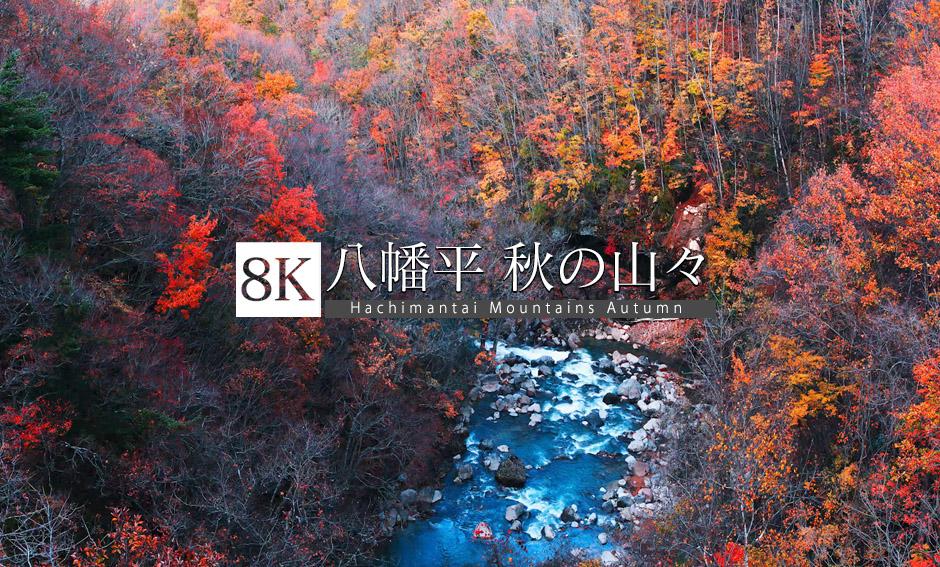 八幡平 秋の山々_8K