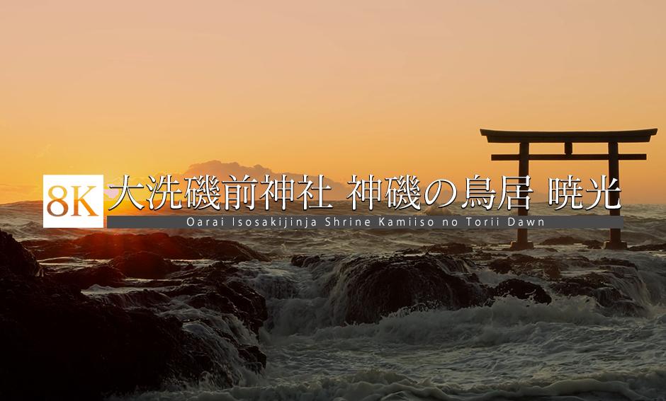 大洗磯前神社 神磯の鳥居 暁光_8K