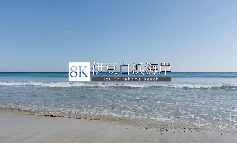 伊豆白浜海岸_8K