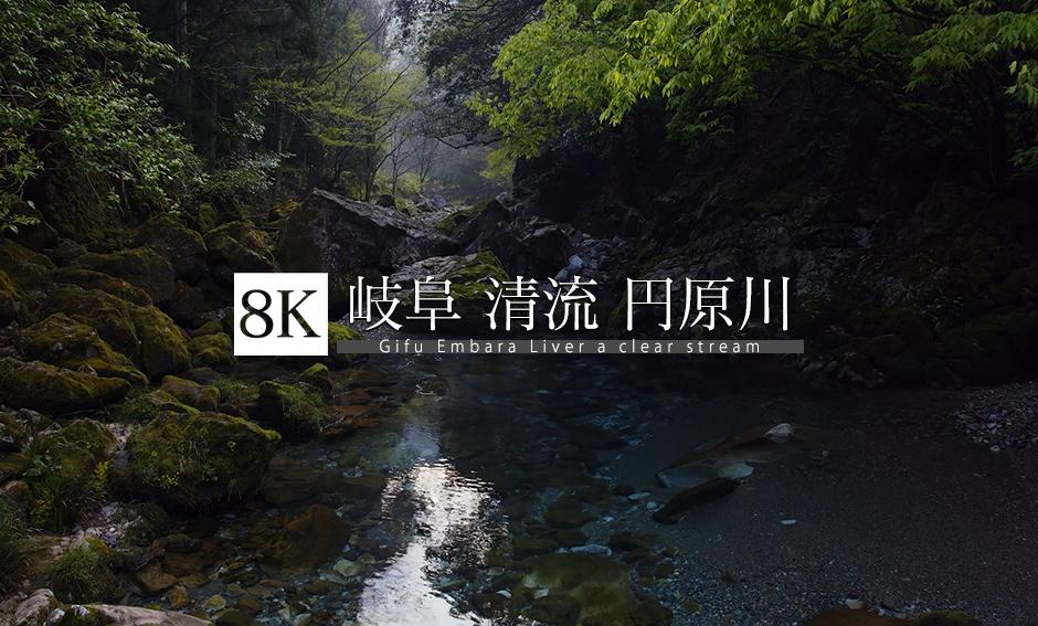 岐阜 清流 円原川_8K