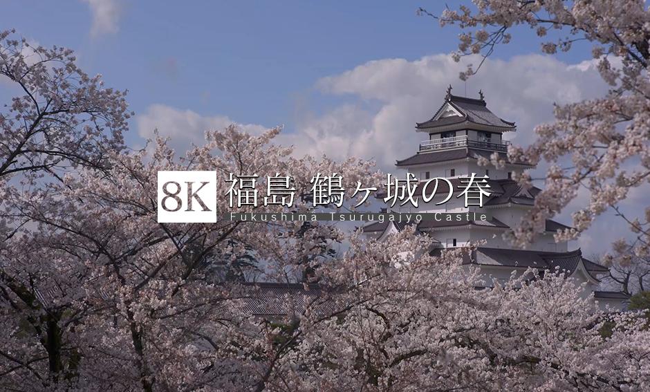 福島 鶴ヶ城の春_8K