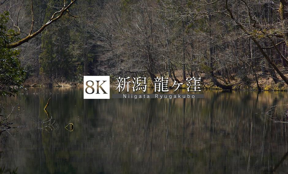 新潟の湧水 龍ヶ窪_8K
