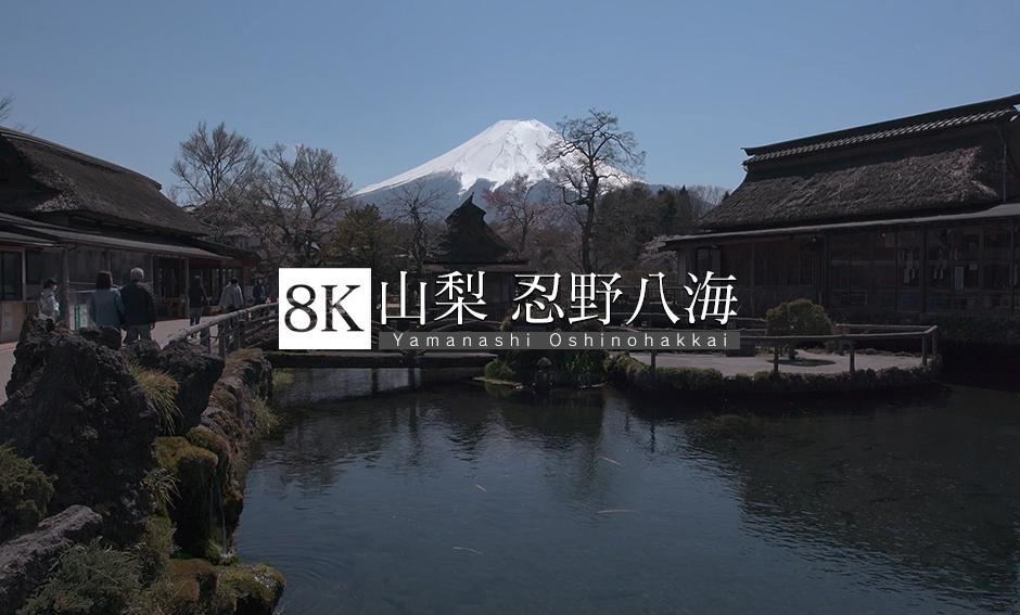 山梨 忍野八海_8K