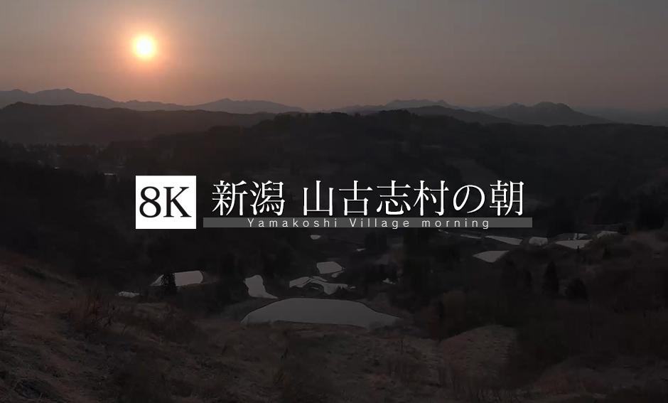新潟 山古志村の朝_8K
