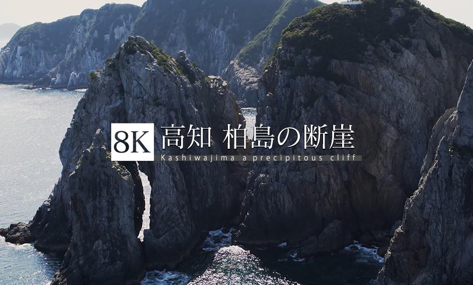 高知 柏島の断崖_8K