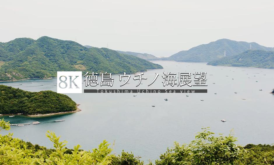 徳島 ウチノ海を望む_8K