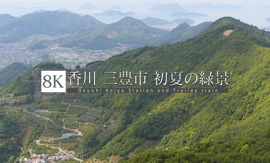 香川 海辺の街 初夏の段畑を飛ぶ_8K