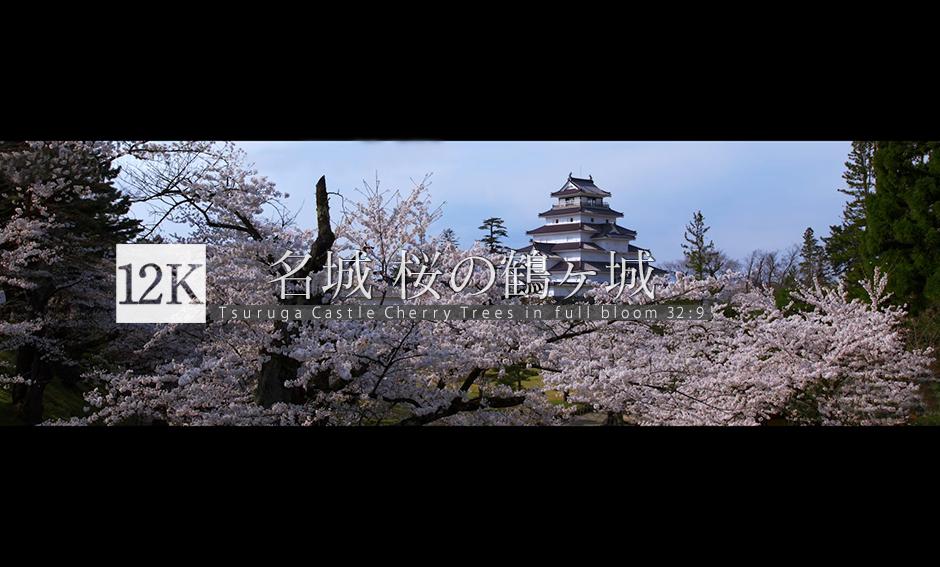 名城 桜の鶴ヶ城  12K WIDE 32:9