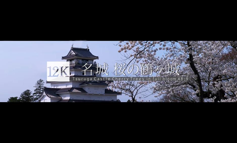 名城 桜の鶴ヶ城 12K WIDE 48:9