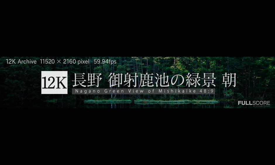 御射鹿池の緑景 朝12K_:48:9